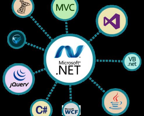 Web Design Developer Courses